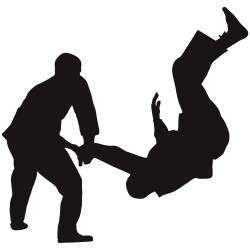 Hapkido-Picture